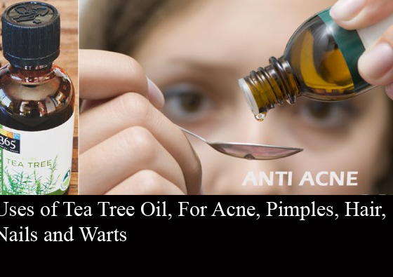 Uses of Tea Tree Oil, For Acne, Pimples, Hair, Nails and Warts