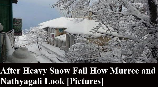 After Heavy Snowfall how Murree and Nathyagali Look [Pictures]